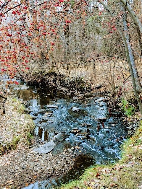 Mill Creek Ravine - North-ի լուսանկարը